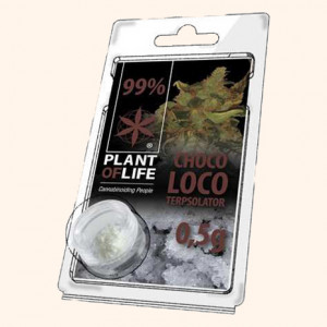 photo-resine-cbd-amnesia-haze-22-%-thc