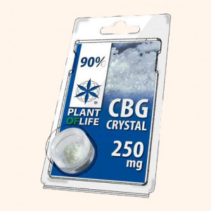 photo-resine-cbd-chewing-gun-22-%-thc