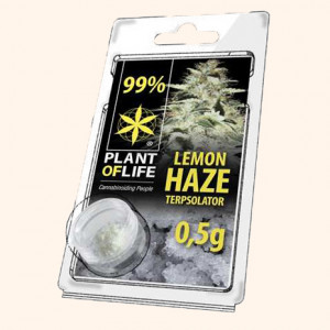 photo-resine-cbd-critical-mass-22-%-thc