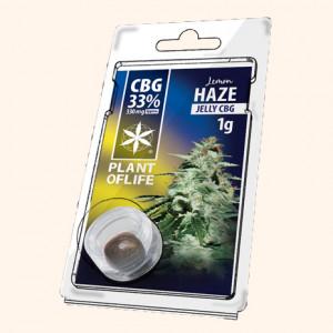 photo-resine-cbd-fruit-pasteque-10-%-thc